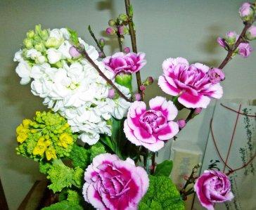季節の花_20.jpg
