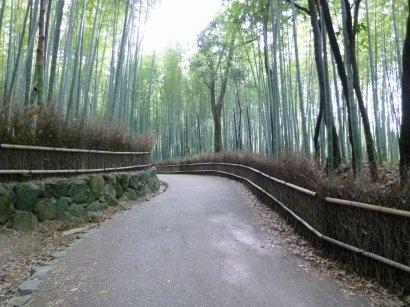 嵐山②14_20.jpg